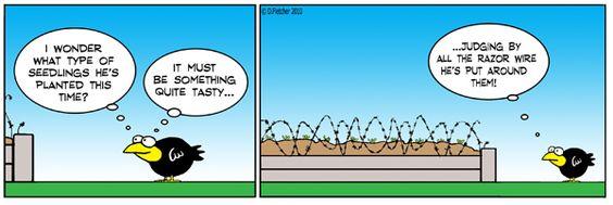❤ =^..^= ❤    Crumb Comic Strip, May 26, 2010 on GoComics.com