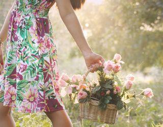 Veja algumas dicas para tirar fotos na primavera