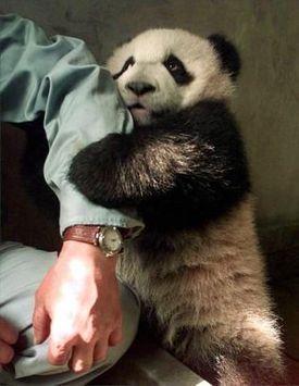snuggle ME.: