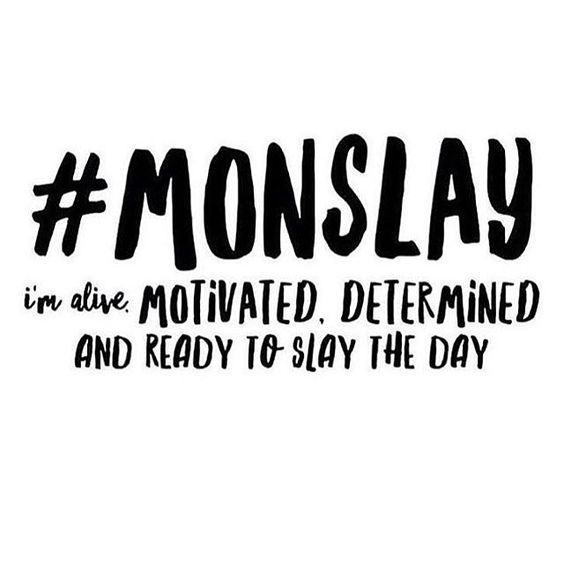 Monday Memes - Laugh, Cry and Post These Funny Monday Memes | Monday  motivation quotes, Monday quotes, Weekday quotes