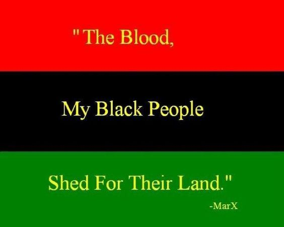 Red - the blood that unites all people of African ancestry, and the blood that is shed for liberation. Black - black people whose existence as a nation, though not a nation-state, is affirmed by the existence of the flag.     Green - the abundant natural wealth of Africa.   .
