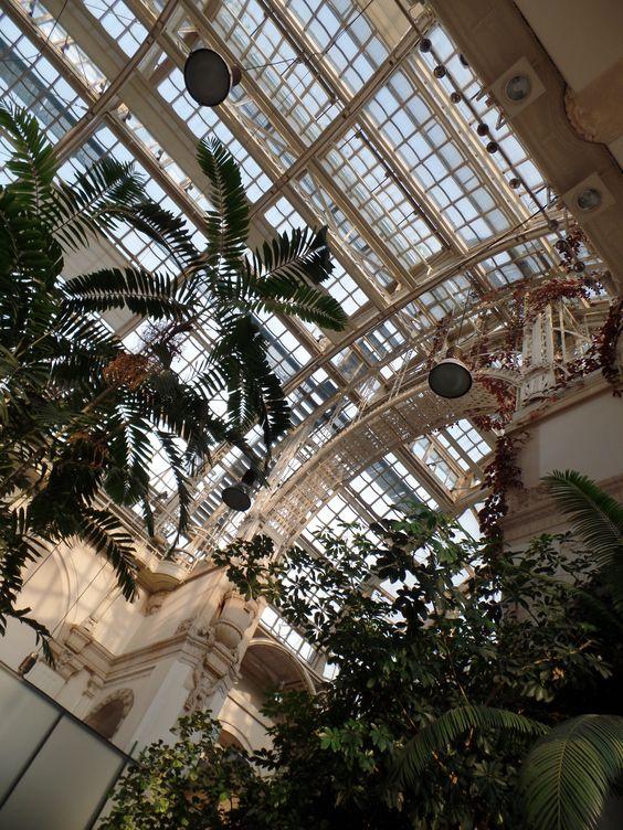 Immer einen Besuch Wert, Palmenhaus Wien