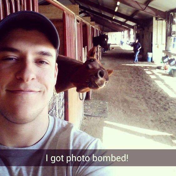 Selfie photo bomb