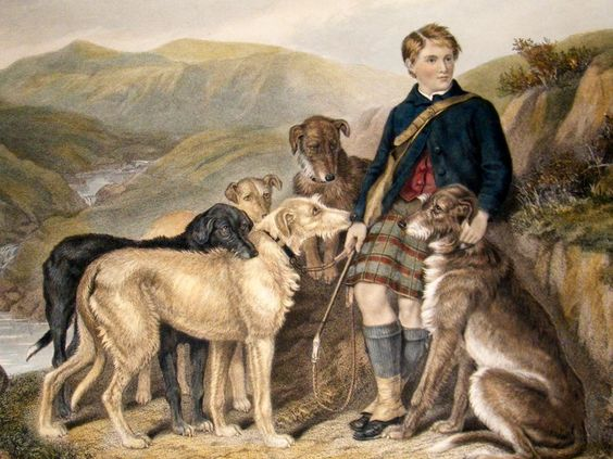 hunting dog paintings | ... Taylor 1883 LG Folio Hand Col. Stag Hunting, Dogs. | Albion Prints: