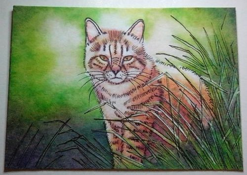 ACEO-Painting-fantasy-funny-animal-cat-kitten-kitty-striped-tiger