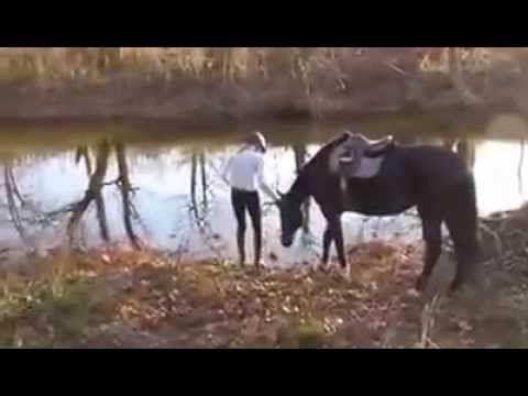 Videolar - YouTube