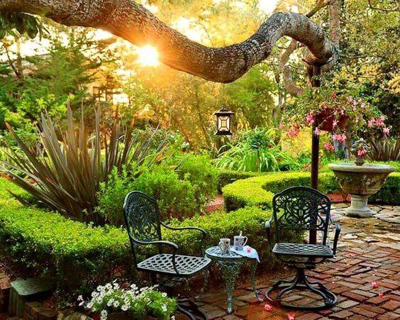 Gardening- a creative journey: