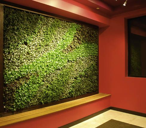 Bright Green Living Wall Gallery | Verticals | Pinterest | Living Walls,  Wall Galleries And Walls