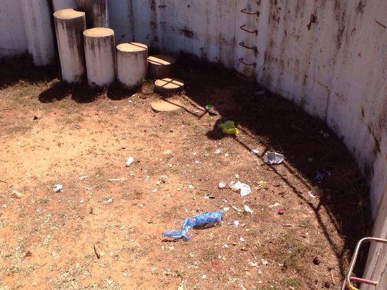 Ambiental- (6) Lixo espalhado no Playground de areia