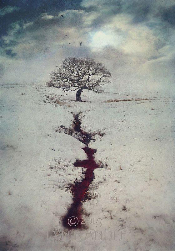 Lyn Flossy Randle du sang et des arbres / La sangre y el árbol © Lyn Flossy Randle