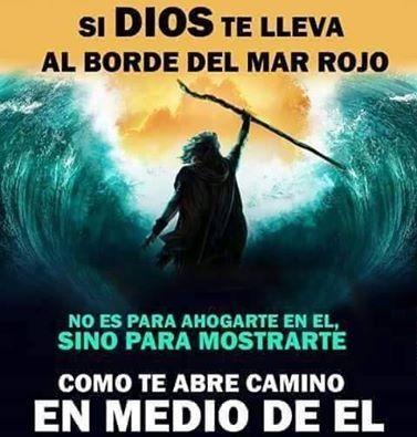 Si Dios te lleva al borde del mar rojo, no es para ahogarte en el, sino para mostrarte, como te abre camino en medio de el.: