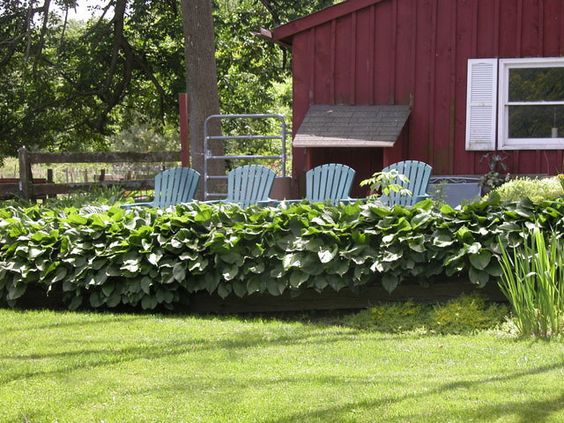 Creating Seating Areas in Your Garden: There's No Reason Seating Can't be a Focal Point of the Garden. Functional doesn't have to mean boring. Seating that's meant for convenience can also add character and color to the garden. This series of blue Adirondack chairs are in a good vantage point and comfortable. But it's the color that makes them so perfect for this cool green spot.