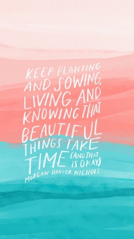 Keep planting and sowing, living and knowing that beautiful things take time (and that is okay). - Morgan Harper Nichols