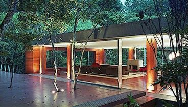 Serious Treehouses