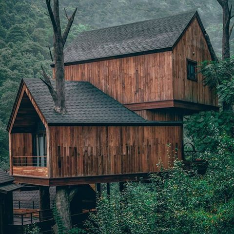 Tiny Cabin Houses Cabin Lifestyler Fotos Y Videos De Instagram In 2020 Tree House Designs Cool Tree Houses Tree House