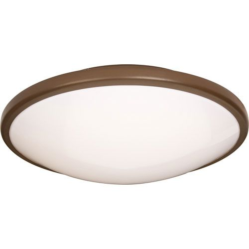 Rim EE Oil Rubbed Bronze One-Light Flush Mount