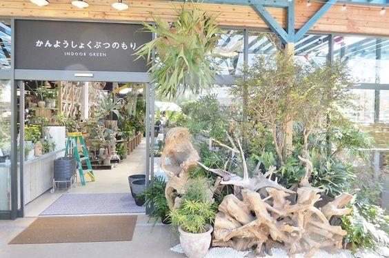 取材レポート 植物の楽園 The Farm Universal 千葉 が3 18 金 にオープン ドライガーデン 庭 モダン インドアガーデニング