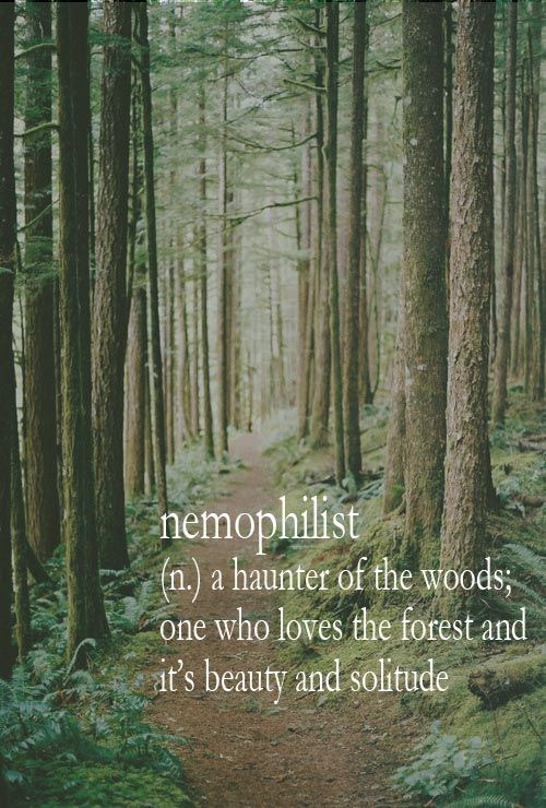 nemophilist (n) a hunter of the woods; one who loves the forest and it's beauty and solitude.