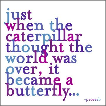 Just when the caterpillar thought the world was over, it became a butterfly #inspiration #quotes #strength: