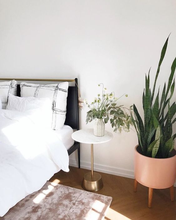 This is one of the best college apartment decorating ideas! & 15 College Apartment Decorating Ideas You Need To Copy - Society19