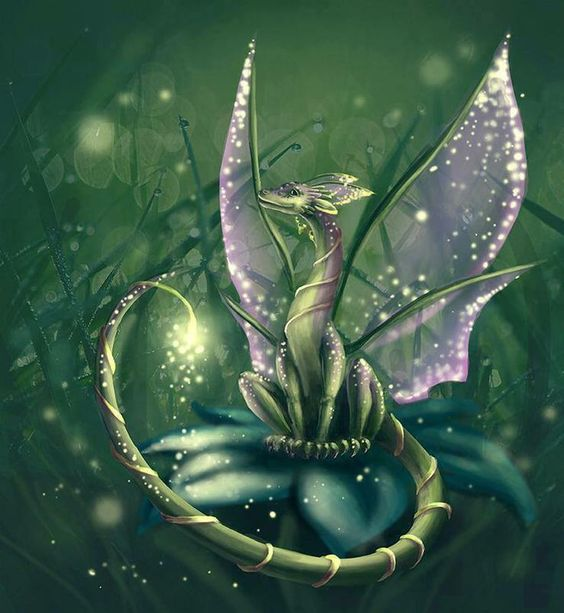 Dragones violeta