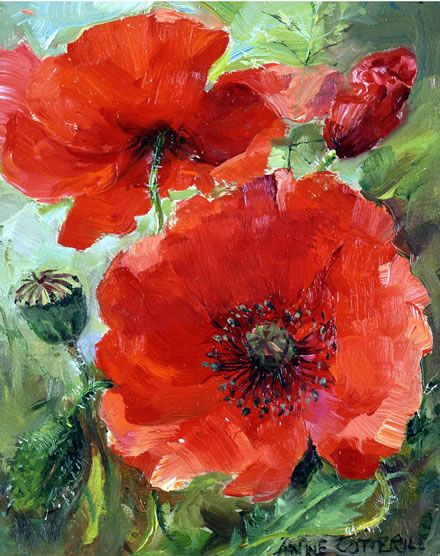 Poppies | Mill House Fine Art – Publishers of Anne Cotterill Flower Art: