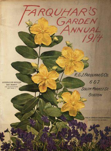 Farquhar S Garden Annual R J Company Nursery And Seed