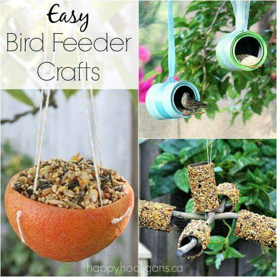 bird feeder craft for preschoolers crafts bird feeders and friends on 254
