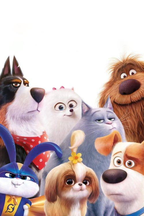 Utorrent The Secret Life Of Pets 2 Vf Film En Entier Gratuit 4k Ultrahd Hd 1080p Action Adventure Animation Bi Secret Life Of Pets Pets Secret Life