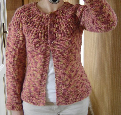 modele tricot gilet shalom top down