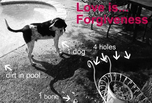 Love is ...Forgiveness