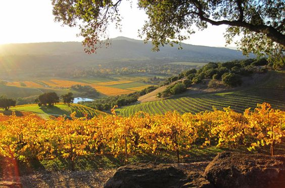 Four Great Sonoma Hikes