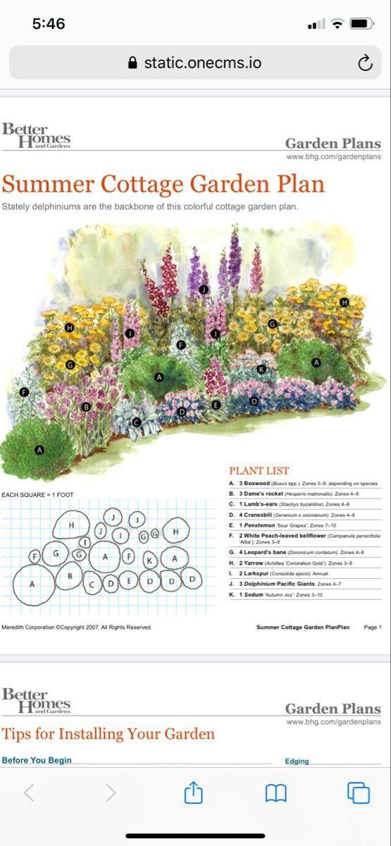 Pin On Cottage Garden Plants Perennials