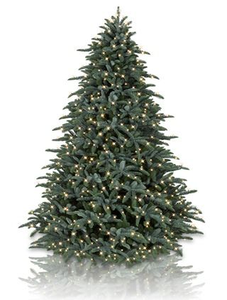 Trees Christmas Trees And Balsam Hill On Pinterest