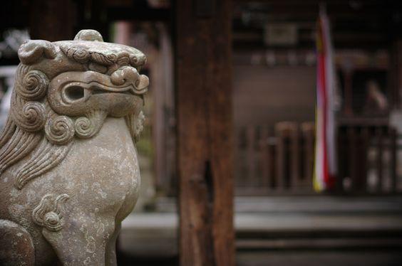 https://flic.kr/p/9tyLhU | welcome | motoiwashimizu-hachimangu, Nara