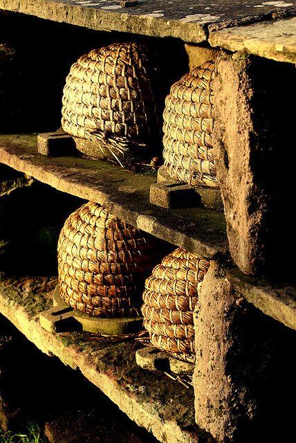 Warning! - A parafina original que é extraída da cera das abelhas é optima para acelarar o tratamento de problemas musculares e articulares uma vez que parte dos nutrientes são absorvidos como um creme ou óleo para o organismo.