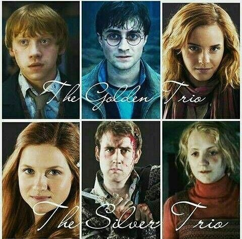 The Golden Trio And The Silver Trio On We Heart It Harry Potter Facts Harry Potter Funny Potter Facts