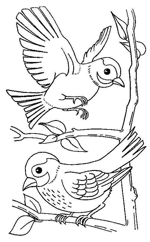 vogelhäuschen ausmalbilder winter tiere  catherine miller