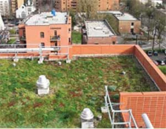 This Apartment Building In Portland Oregon Is Among The 6 Acres 24300 M2 Of Green Roofs In The City As Of 200 Green Roof House Green Roof Green Roof Benefits