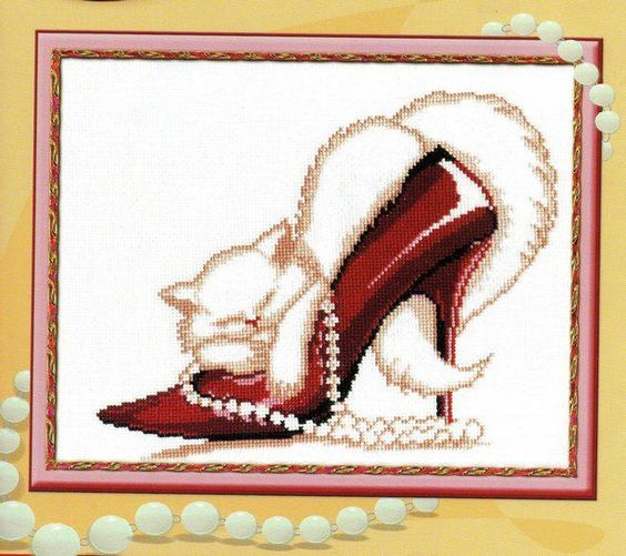 shoes cat: