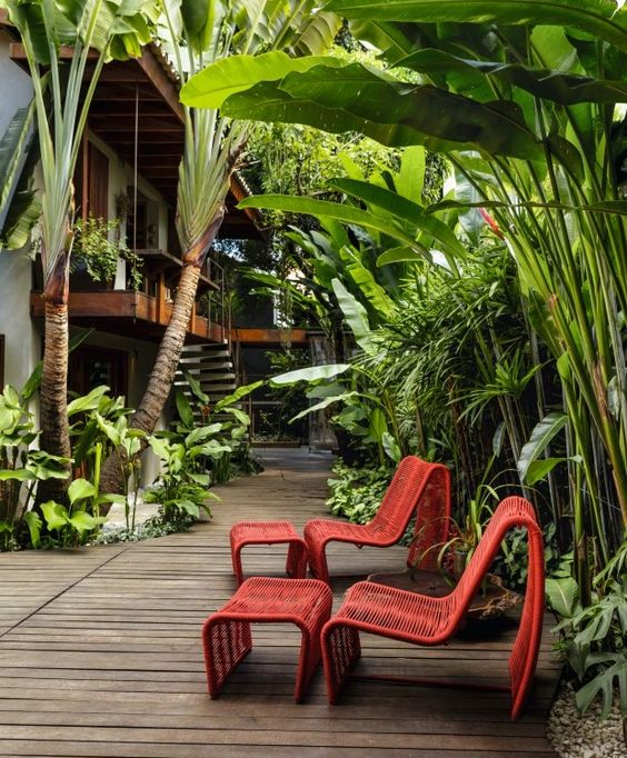Jardim com deck de cumaru e espécies nativas, como  helicônias e palmeiras