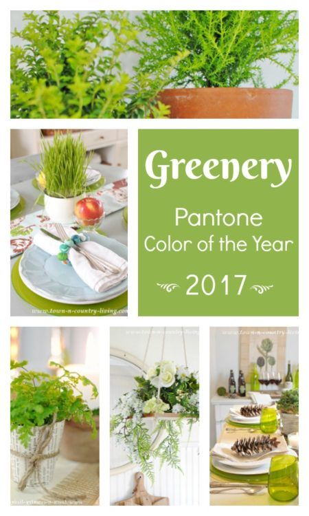 Decorating with Greenery, Pantone's 2017 Color of the Year