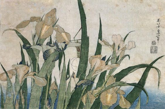 Iris Flowers and Grasshopper about 1830