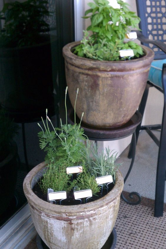 When you have no yard and a 3 foot patio, you have to have green somewhere! These cute copper markers are awesome.