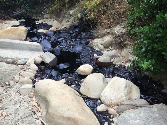 Cleanup underway in a Southern California ravine where 700 barrels of crude spilled from pipeline.