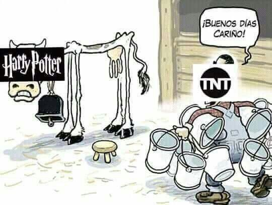 Pin En Meme