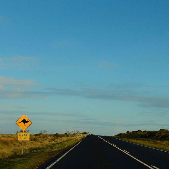 Ruta por la #greatoceanroad #australia #victoria #kangaroosign #kangaroo by jmgalisteo