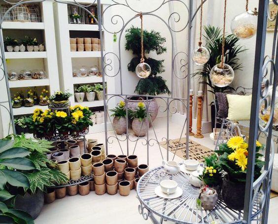 Deze foto geeft een beetje een idee hoe je je woonkamer in de stijl van het Botanisch wonen kunt brengen...  Botanisch wonen is dé trend voor 2015: veel weelderig groen in huis, zodat je woonkamer een heerlijke serre of haast tropische kas lijkt te zijn!