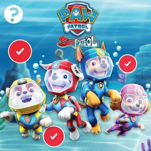 Paw Patrol Sea Patrol Quiz Science Games Nick Jr Coloring Books