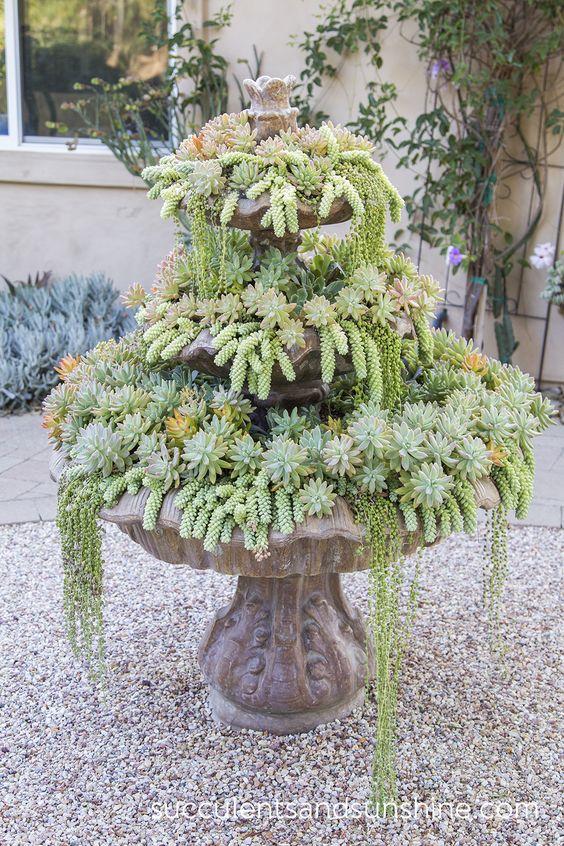 Fountain of Succulents in Jeanne Meadow's Garden - www.succulentsandsunshine.com